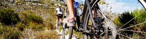 10 Best bicycle tours to try before you die